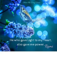 He who gave Light to my Heart also gave me power ༺♡༻ Rumi