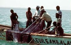 Climate Change And Seafood Supply: Developing Countries Most Vulnerable To Ocean Acidification