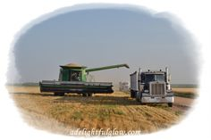 Bringing in the harvest