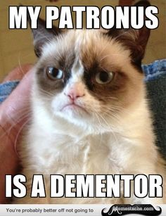 Grumpy Cat: My Patronus is a Dementor
