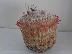 Protea Composite made out of 9 Protea flowers
