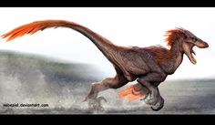 Velociraptor (?); Late Cretaceous (75–71Ma); Theropod; Discovered by Osborn, 1924; Artwork by Nebezial(?); note: possibly velociraptor