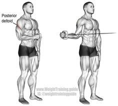 Cable external shoulder rotation guide and video Cable external shoulder rotation. This is a very important exercise for shoulder health! Visit website to learn why. Main muscles worked: Infraspinatus, Teres Minor, and Posterior Deltoid. Sport Fitness, Muscle Fitness, Fitness Shirts, Workout Fitness, Cable Workout, Kettlebell Training, Workout Kettlebell, Training Workouts, Triceps Workout