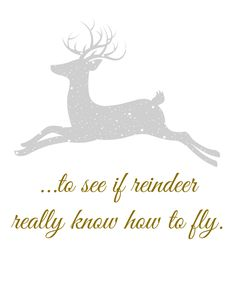 …To See If Reindeer Really Know How To Fly Printable from Blissful Roots