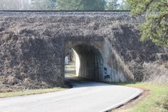 Tunnel at Cook Springs, near Pell City in St Clair County, AL Pell City Alabama, Mountainous Terrain, County Seat, Sweet Home Alabama, Weekend Trips, Past, Cook, Pictures, Beautiful