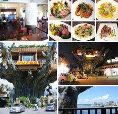 GajumaruTreehouse Diner, Japan