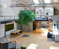 Does a live tree in the lounge qualify as a courtyard? SOMA WAREHOUSE LOFT