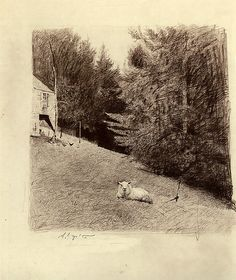 Untitled pencil drawing by Andrew Wyeth, 1973.