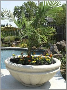 Extra Large Planters Google Search