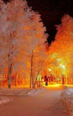 Winter in N Europe