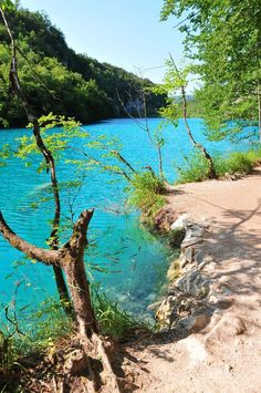 Road-trip en Croatie: Les lacs de Plitvice Lac De Plitvice, Places To Travel, Places To See, Paradise Travel, Road Trip Europe, Voyage Europe, Parc National, Croatia Travel, Famous Places
