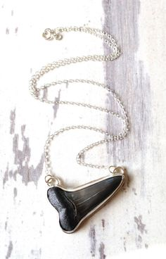Mako shark Tooth Necklace, Shark Tooth Pendant, Bezel Set,Sterling Silver,Short Chain Necklace,Sideway Pendant,Sterling Silver Chain on Etsy, $125.00