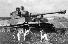 Panzerkampfwagen VI. Tiger in summer
