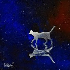 Infinite by Raphaël Vavasseur … FROM I'm cat -- by Raphaël Vavasseur -- Carrouges, France on Etsy Good Night Cat, Cat Doodle, Watercolor Cat, Cat Silhouette, Cat Drawing, Wildlife Art, Pet Memorials, Dog Art, Crazy Cats