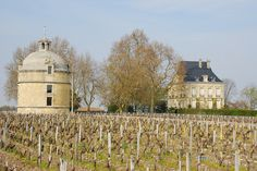Château Latour, Pauillac, Bordeaux, France