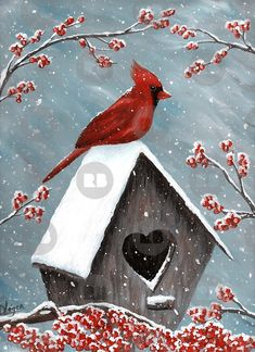 Acrylic Painting of the red Northern Cardinal bird in the winter snow. The snow is gently falling on him, the birdhouse and the frozen holly berries. Original Acrylic Painting Art by Donna Leger. All Rights Reserved. Painting Snow, Winter Painting, Winter Art, Winter Snow, Painting Art, Bird Painting Acrylic, Christmas Paintings On Canvas, Bird Paintings On Canvas, Canvas Painting Designs