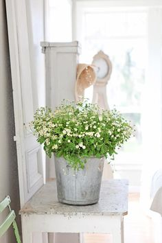 white on white decor Repinned by www.silver-and-grey.com
