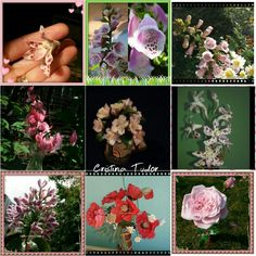 Sugar love Sugar Love, Sugar Flowers, Floral Wreath, Wreaths, Home Decor, Homemade Home Decor, Door Wreaths, Deco Mesh Wreaths, Garlands
