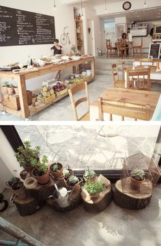 what a charming cafe. love dem tree stumps