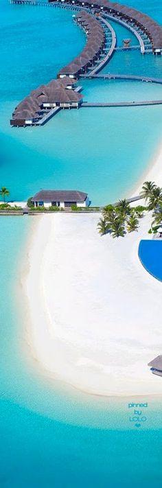 Velassaru Maldives   LOLO❤︎