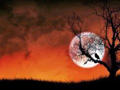 A Lonely Night Desktop Wallpaper HD