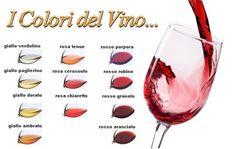 colori del vino - Buscar con Google