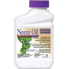 A garden spray! Neem oil acts as a fungicide, insecticide and miticide killing eggs, larvae and adult stages of insects and preventing fungal attack of plant tissues. Stops powdery mildew in 24 hours. Slugs In Garden, Garden Insects, Garden Pests, Garden Bugs, Garden Care, Garden Tools, Insect Eggs, Insect Pest, Bug Control