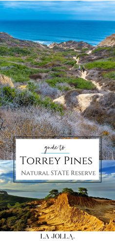 Guide to Torrey Pines State Natural Reserve including hiking trails, wildlife, parking, directions, beach and more tips for this San Diego County gem. Torrey Pines Hike, Torrey Pines State Reserve, San Diego Hiking, San Diego Travel, North Beach, La Jolla, Mexico Travel, California Travel, Beach Fun
