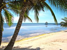 Belize Beaches | Belize Beaches