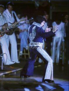 Elvis Presley Concerts, Elvis In Concert, Elvis Presley Wallpaper, Patriotic Pictures, Elvis And Priscilla, Honey Bunny, Graceland, Bible Studies, Memphis