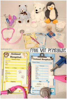 Free Vet Printables - free printables for imaginary play for kids. Create your own pretend Animal Hospital.