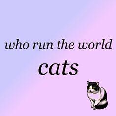 who run the world...cats