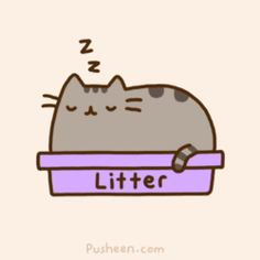 Pusheen The Cat: Things That Cats Apparently Don't Mind