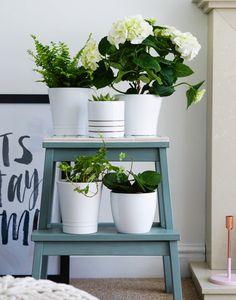 Bekväm Hocker Pflanzenstaender Selber Machen #diy #ideas