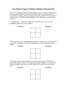 7-Punnett-Square-Practice-Answer-Key.docx | Genetics ...