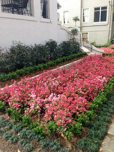 New Orleans Garden Design garden design calimesa ca Ponseti Landscaping Old Metairie Lakeview And Uptown New Orleans Garden Landscaping Design And Maintenance