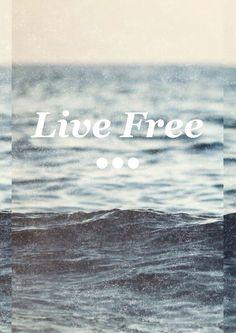 >>> live free