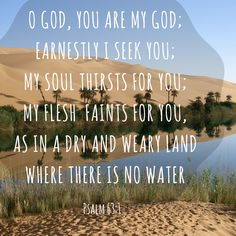 "Psalm 63:1, ""earnestly I seek you; my soul thirsts for you; my flesh saints for you, as in a dry and weary land where there is no water."" #ScriptureSunday"
