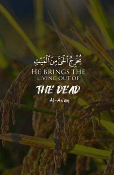 Hadith Quotes, Allah Quotes, Quran Quotes, Islamic Inspirational Quotes, Islamic Quotes, Doa Islam, Quran Verses, Religion, Life Quotes