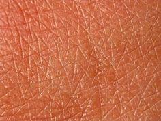 Textura de la piel