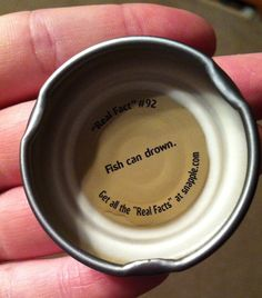 I just thought I should share my snapple fact with you Wow Facts, Real Facts, Wtf Fun Facts, True Facts, Useless Knowledge, Knowledge Is Power, Snapple Facts, Sea Quotes, Strange Facts
