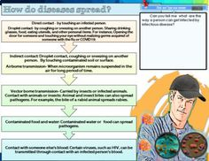 INFECTIOUS DISEASES-GOOGLE SLIDES- DISTANCE LEARNING by Maggie's Files