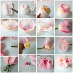 Rolled paper flowers, Rolled paper and Paper flowers
