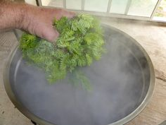 Spruce Ale without hops