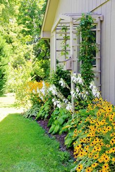 Colorful Garden-Inspired Home Tour - Thistlewood Farm - Love this idea for the side of the Guest House. Put the arbor over the kitchen window and maybe transplant some of the climbing roses…. Source by lacerab - Wall Climbing Plants, Climbing Roses, House Landscape, Landscape Design, Garden Design, Garden Arbor, Garden Trellis, Thistlewood Farms, Colorful Garden