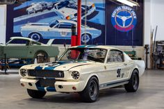 1965 Mustang, Mustang Fastback, Ford Mustang, Road Race Car, Race Cars, Ken Miles, Shelby Gt350r, Old Muscle Cars, Carroll Shelby