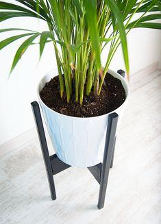 Mensen die in mijn huis komen begrijpen niet dat ik al zoveel tijd besteed aan mijn tuin en planten in huis. Nu snap ik dit ook wel, als je ziet hoe ver ik van huis ben met mijn huis (pun!). Maar ik wilde er niet op wachten. Planten in huis geven gelijk zoveel sfeer en het ademt frisheid. Het straalt letterlijk levendigheid uit! Nu had ik eerst wat planten op de grond staan van mijn woonkamer, maar samen met een mand en poefs die óók op de grond staan, werd het een beetje een festijn voor…