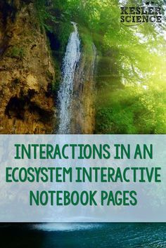 Ecosystems Interactive Notebook Pages for middle school science students. Science Student, Middle School Science, Life Science, Earth Science, Forensic Science, Science Fun, Science Ideas, Physical Science, Science Lessons