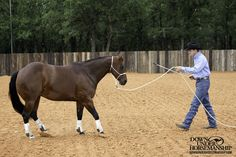 Exercise #5: Backing Up - Method 1 Tap the Air  Goal: When you tap the air in front of the horse, he should respond by backing away with respect and energy.   More about the exercise: https://www.downunderhorsemanship.com/Store/Product/MEDIA/D/252/