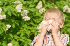 Los distintos tipos de #alergias respiratorias se dividen fundamentalmente de acuerdo a los agentes alergénicos, y es importante conocerlos para saber cómo prevenir una reacción alérgica. #salud